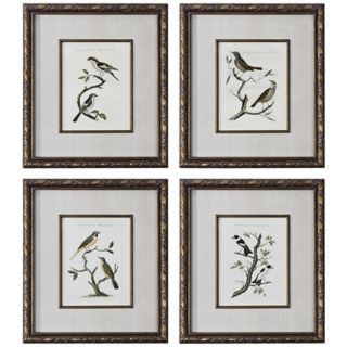 Uttermost Set of 4 Nozeman Birds I IV Framed Wall Art   #V4005