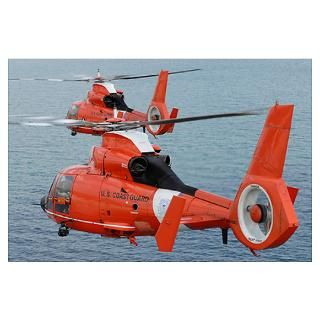 Two Coast Guard HH 65C Dolphin helicopters fly in Poster