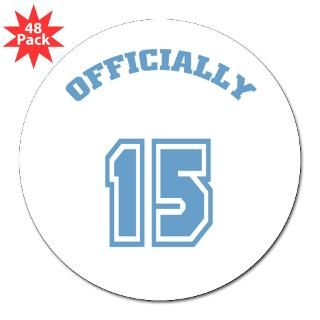 Happy Birthday 15 Year Old Stickers  Car Bumper Stickers, Decals