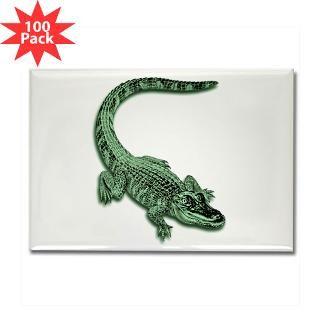 florida alligator rectangle magnet 100 pack $ 189 99