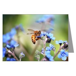 Forget Me Not Greeting Cards  Buy Forget Me Not Cards