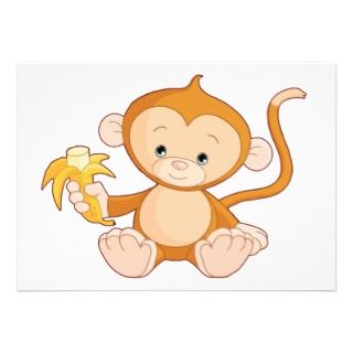 Cute baby girl monkey