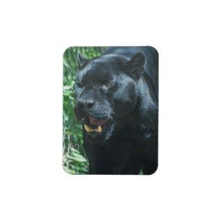 Black Panther Cat Premium Magnet