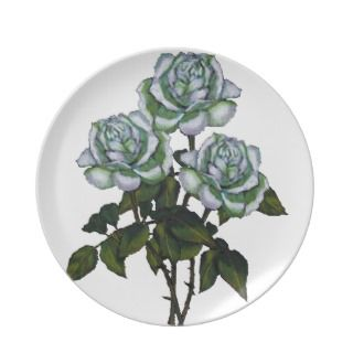 Three White Roses Color Pencil Art Floral Dinner Plates