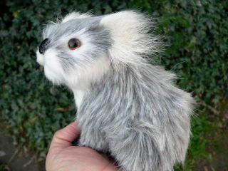 Koala Bear Baby Boy Furry Animal OOAK Fairy PAL Art Doll Prop Gift for