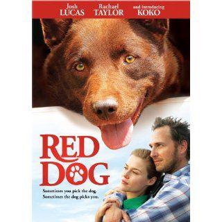 Red Dog DVD Josh Lucas Rachael Taylor Koko  Only
