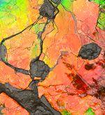 Iridescent Red Orange Green AMMOLITE Fossil Ammonite Canada for sale