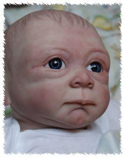 New Release Reborn Liam OOAK Doll Lifelike Art Artist Baby Boy Denise