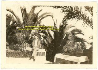 1920s Photo California CA Hollywood Yamashiro Japanese Gardens Foo Dog