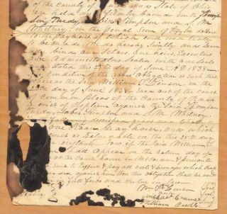 County Ohio Handwritten Paper Roan Gray Horse Linson Replein T