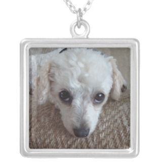 Little White Teacup Poodle Dog Personalized Necklace