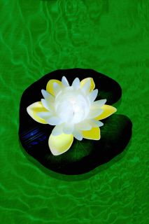 White Water Lily + Green Leaf + 7C color changing LED