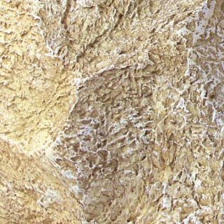 Limestone Rock Large Pet Cremation Urn   Engravable
