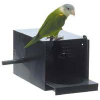 Hagen Parakeet Love Bird Nesting Breeding Box