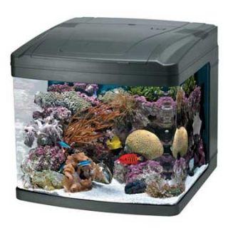 Oceanic 29 Gallon Biocube New in Box