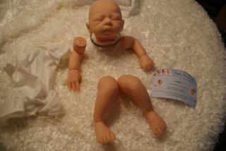 Anne/Maribel Valles Villanova/VINYL REBORN DOLL KIT /Reborn Baby /SOLD