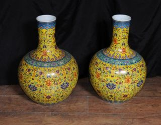 Pair Chinese Porcelain Vases Hand Pained Ming Poer