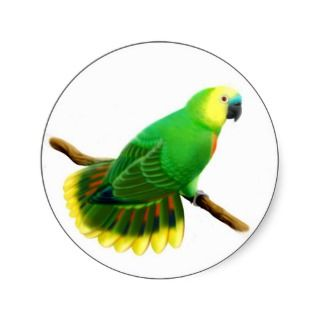 Blue Fronted  Parrot Sticker