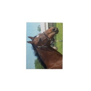 Chestnut Arabian Horse Autumn Fall Trees Limited Edition ... - photo#42
