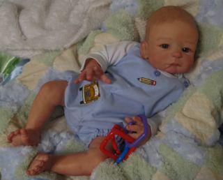 Reborn Baby Boy Noah Anatomically Correct by Sheila Michaels