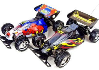 Savage x Buggy RC 2WD 1 16 Electric Radio Remote Control RTR Off Road