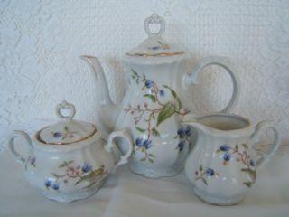 Bareuther~ Demi Tasse or Tea Pot Set w Creamer, Sugar, 6 Cups Saucers