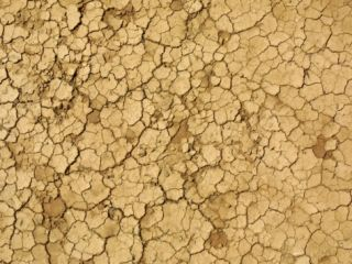 Cracked and Barren Dry Dirt Background Photographic Print