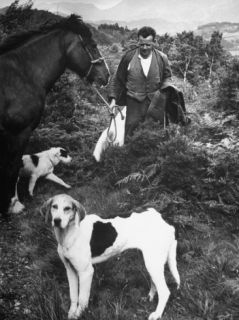 Farmer Thomas Stoddart Standing Next to Horse and Two Dogs Premium Photographic Print