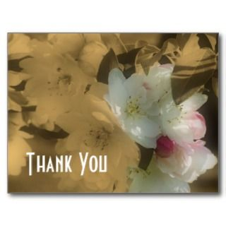 Spring Blossoms Sepia Flowers Thank You Postcard