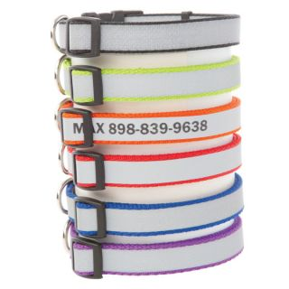 Coastal Pet Products Personalized Reflective Plain Dog Collars for Dogs   Summer PETssentials   Dog