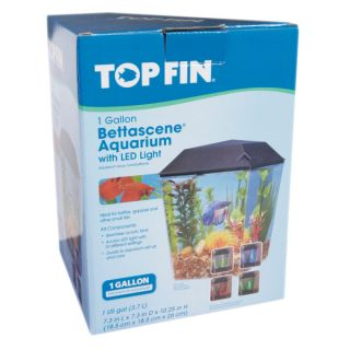 Top Fin� BettaScene 1 Aquarium Kit   Sale   Fish