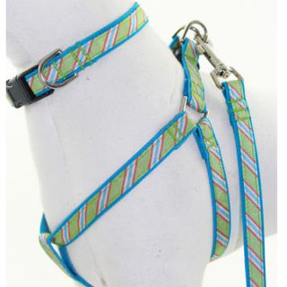 Lola & Foxy Nylon Dog Collars   Lime/Blue
