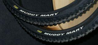 Schwalbe Muddy Mary Performance 60 559 / 26x2,35 Snake Skin