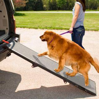 Pet Gear Portable Pet Ramp   Summer PETssentials   Dog