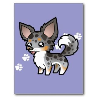 Cartoon Chihuahua (merle tricolor long coat) postcards by SugarVsSpice
