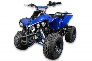 125cc XXL Quad Warrior Kinderquad Poket Quad Bike Mini ATV Kinder