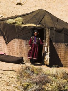 Aimaq Nomad Camps, Near Village of Jam, Afghanistan Photographic Print by Jane Sweeney