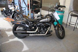 REMUS Custom Harley Davidson Softail FLSTN / Cross Bones