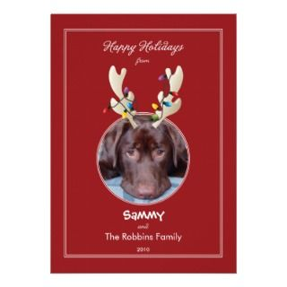 Reindeer Ears Pet Holiday Photo Card Announcement