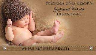 Reborn Doll,OOAK,Baby Zinny Marita Winters Sculpt,Gorgeous