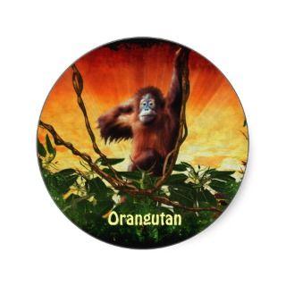 Oranguan Baby & Jungle Grea Ape Primae Sickers