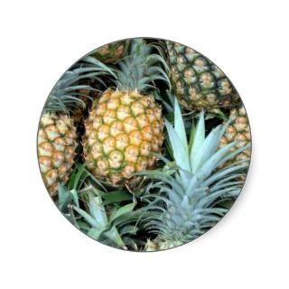 Teal, Green and Golden Hawaiian Pineapples Round Stickers