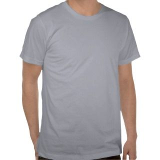 Mens American Apparel Fitted T Shirt Heather Grey