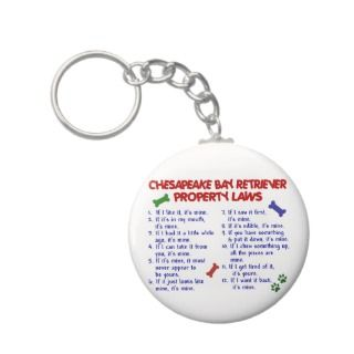 CHESAPEAKE BAY RETRIEVER Property Laws 2 Keychain