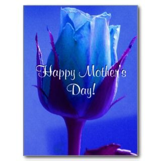 Happy Mothers Day Blue Rose Post Cards