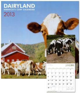 Dairyland America   2013 Wall Calendar Calendars