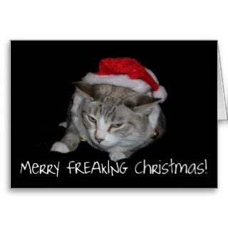 Merry Freaking Christmas Fat Cat Christmas Card