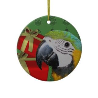 Blue Gold Macaw Parrot Bird Christmas Ornament