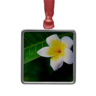 Plumeria Christmas Tree Ornament