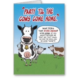 Funny birthday card: Party cows